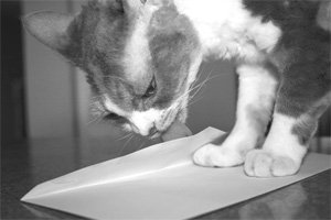 «Мы в ответе за тех, кого подписали»: рецензия на книгу Кота «Е-mail маркетинг. Исчерпывающее руководство»